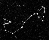 Constelación scorpius — Foto de Stock