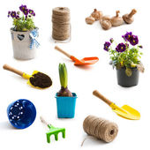 Collage of  objects for gardening — Stock Photo