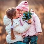 Little girl kissing her sister — Stock Photo #71953017