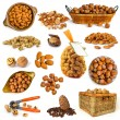 Different nuts isolated — Stock Photo #73217061