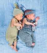刚出生的双胞胎 l 睡在一个篮子里 — 图库照片