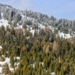 Hotels in winter Austrian Alps — Stock Photo #59045989
