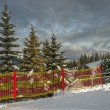 Ski-track in mountain forest — Stock Photo #61242447