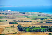 Rural landscape on Cyprus — Stock Photo