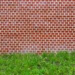 Brick wall and green grass — Stock Photo #51835503