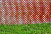 Brick wall and green grass — Stock Photo