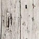 Wooden door texture — Stock Photo #53461889