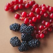 Berryes on a paper — Stock Photo