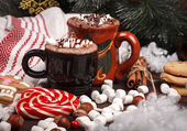 Two cups of cocoa — Stock Photo