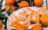 Brunch di mandarini — Foto Stock