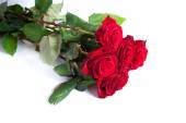Three fresh red roses — Stock Photo