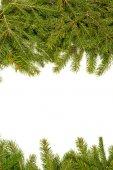 Fondo de navidad. marco de eva — Foto de Stock