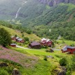Country summer landscape, Norway — Stock Photo #59135991