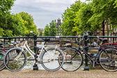 Kanal köprüden Bisiklet — Stok fotoğraf