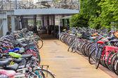Estacionamento para bicicletas em Amsterdam — Fotografia Stock