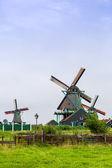 Wind mills in Holland — Foto Stock