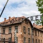 Entrance gate to Auschwitz — Stock Photo #60327969