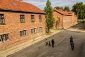 Concentration camp Auschwitz — Стоковое фото