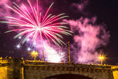 Fireworks in Dresden at night — Stock Photo