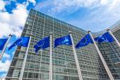 European flags  in Brussels — Stock Photo