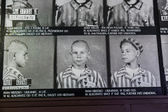 Concentration camp in Auschwitz. — Stock Photo