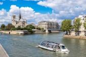 Seine and Notre Dame de Paris — Foto Stock