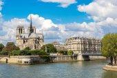 Невод и Собор Парижской Богоматери — Стоковое фото