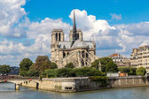Seine and Notre Dame de Paris — Stock fotografie