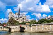 Seine and Notre Dame de Paris — Stock Photo