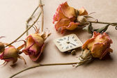 Vintage clock dial with dry roses — Stock Photo