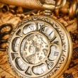 Vintage pocket watch — Stock Photo #53752867