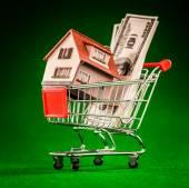 ショッピング カートとハウス — ストック写真