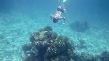 Snorkeler man diving — 图库视频影像