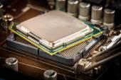 Modern processor och moderkort — Stockfoto