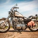 Постер, плакат: Harley Davidson Sportster 883 Low