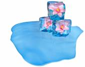Ice cubes with flowers and air bubbles — Stock Photo