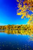 Magic fall over the quiet pond. — Stock Photo