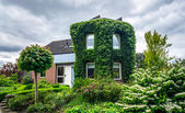 Village house in Holland. — Stock Photo
