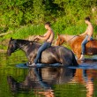 Two young men astride horses — Stock Photo #52515401