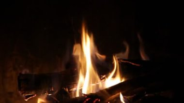 Fireplace with medium size flames — Stock Video