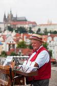Street musician in Prague — Stock Photo