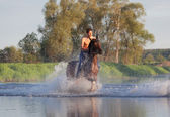 Rider on horse — Stock Photo