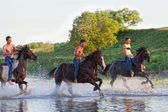 Riders jump gallop on horses — Stock Photo