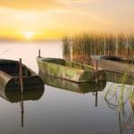 Three boats on the lake — Stock Photo #62942195