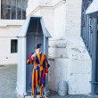 Постер, плакат: Papal Swiss guard over Vatican Museum
