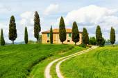 Rural house and cypress avenue — Stock Photo