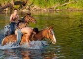 Young men bathe horses — Stock Photo