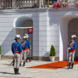 Change of guard of honor at Presidential palace — Stock Photo #72048563