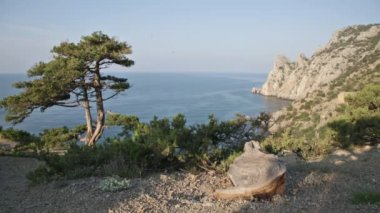 Baie du Cap de Kapchik en Crimée — Vidéo
