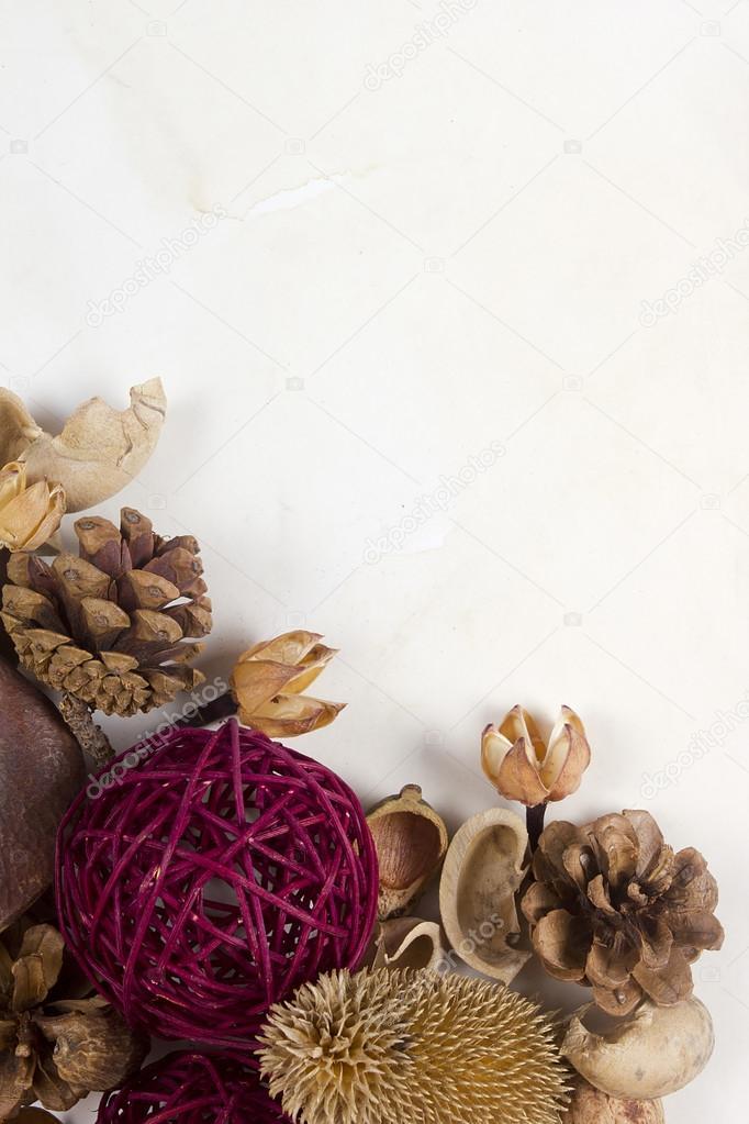 popurr de plantas secas y decoracin u fotos de stock